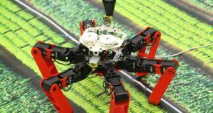 Bionic Award 2020 Dupeyroux 310x165 - Roboter nach Vorbild der Wüstenameise